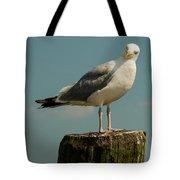 Boston Bay Birdy Tote Bag