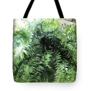 Boston Fern With Visitor Tote Bag