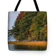 Boston In The Fall Tote Bag