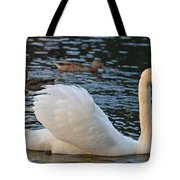 Boston Public Garden Swan Amongst The Ducks Ruffled Feathers Tote Bag