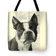 Boston Terrier Portrait In Black And White Tote Bag