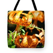 Botanical Art Prints Orange Tiger Lilies Master Gardener Baslee Troutman Tote Bag