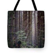Botanical Reincarnation Tote Bag