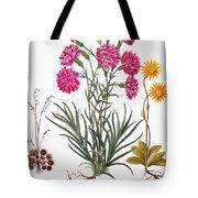 Botany: Flowers, 1613 Tote Bag