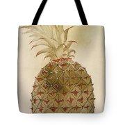 Botany: Pineapple, 1585 Tote Bag