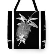 Bottlebrush Trio Tote Bag