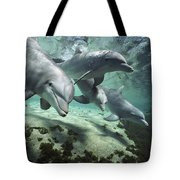 Four Bottlenose Dolphins Hawaii Tote Bag by Flip Nicklin