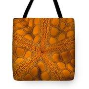 Bottom Of Orange Sea Star Or Starfish Tote Bag