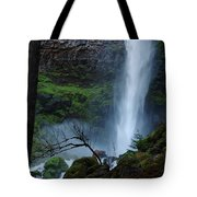 Bottom Of Watson Falls Tote Bag