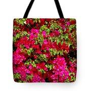 Bougainvillea And Foliage Tote Bag