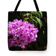 Bougainvillea Bloom Tote Bag