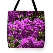 Bougainvillea Blooms Tote Bag
