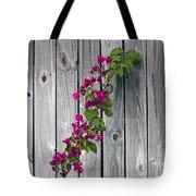 Bougainvillea Glabra Tote Bag