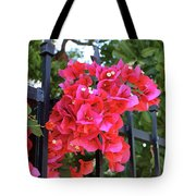 Bougainvillea On Southern Fence Tote Bag
