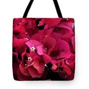 Bougainvillia Tote Bag