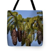 Boughs Of Pine Cones Tote Bag
