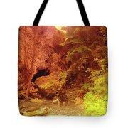 Boulder Cave  Tote Bag
