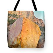 Boulder Color  Tote Bag
