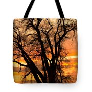 Boulder  County Sunset Tote Bag