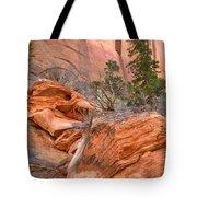 Boulder-notom Road Varnish Tote Bag