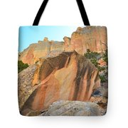 Boulder-notom Varnish Tote Bag