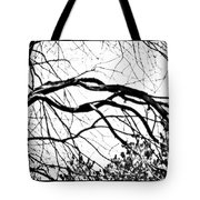 Bound Together In A Love Knot Tote Bag