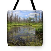 Boundary Waters Beauty Tote Bag