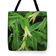 Bountiful Bellwort Tote Bag