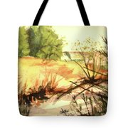 Bouquet Canyon Wash 2 Tote Bag