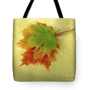 Bouquet De Feuilles / Bunch Of Leaves Tote Bag