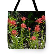 Bouquet Of Paintbrushes Tote Bag