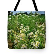 Bouquet Of Wildflowers Along Country Road In Mchenry County Tote Bag