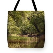 Bourbeuse Reflection Tote Bag