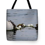 Bouyed Sea Otter  Tote Bag