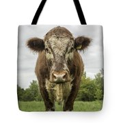 Bovine Beauty 1 Tote Bag