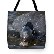 Bow Wave Tote Bag