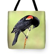 Bowing Tote Bag