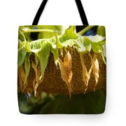 Bowing Sunflower Tote Bag