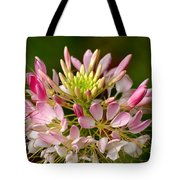 Bowl Of Beauty Tote Bag