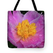 Bowl Of Beauty Peony Catching The Rain Tote Bag