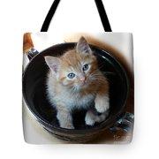 Bowlful Of Kitten Tote Bag
