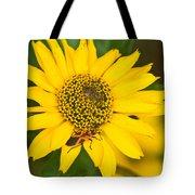 Box Elder Bug On False Sunflower Tote Bag