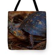 Box Turtle 2 Tote Bag
