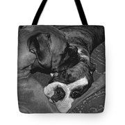 Boxer Buddies Tote Bag