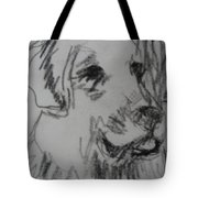 Boy And Dog Under Sky Tote Bag