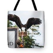 Boy Feeds Mr. Bald Eagle Tote Bag