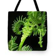 Bracken Fiddle Tote Bag