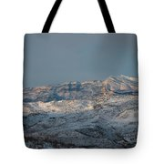 Bradost In The Winter Tote Bag