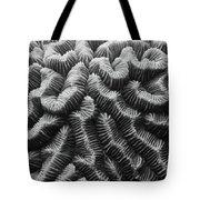 Brain Coral Details Tote Bag