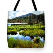 Brainard Lake Rocky Mountain National Park Tote Bag